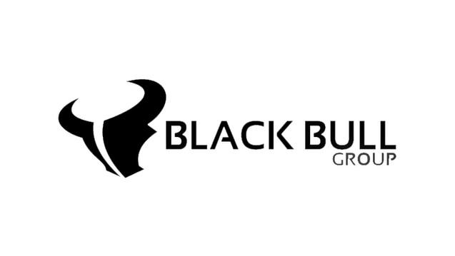 black bull group logo.jpg