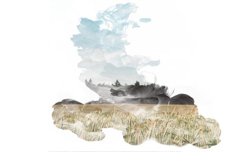 wolk 2.jpg