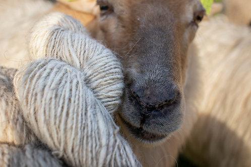 Breiwol - Villa Thorhem duurzame wol