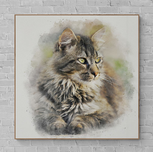 main coon cat wall.jpg