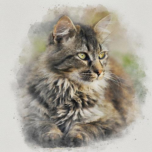 """Maine Coon Cat"" Fine Art Print - 12"" x 12"""