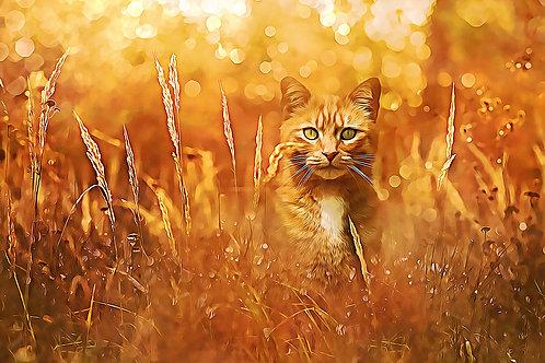 """Little Tiger in the Grass"" Fine Art Print"