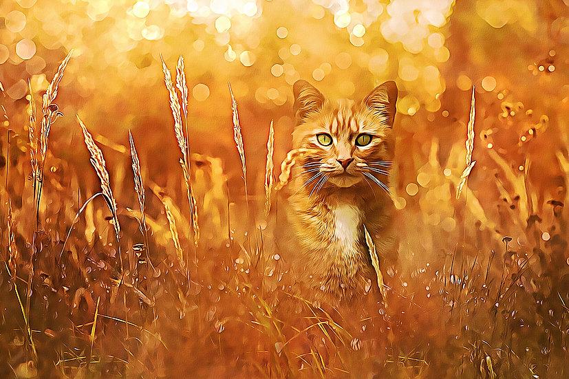 """Little Tiger in the Grass"" Fine Art Print - 12"" x 16"""