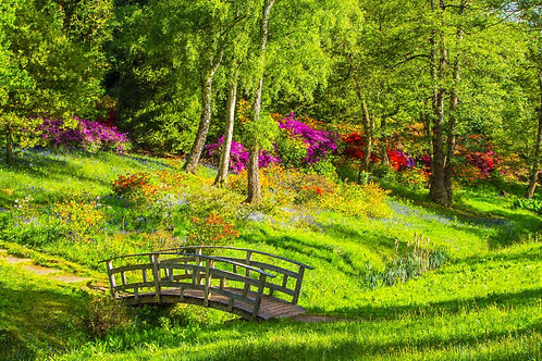 """""""Garden Footpath Bridge"""" Fine Art Print"""
