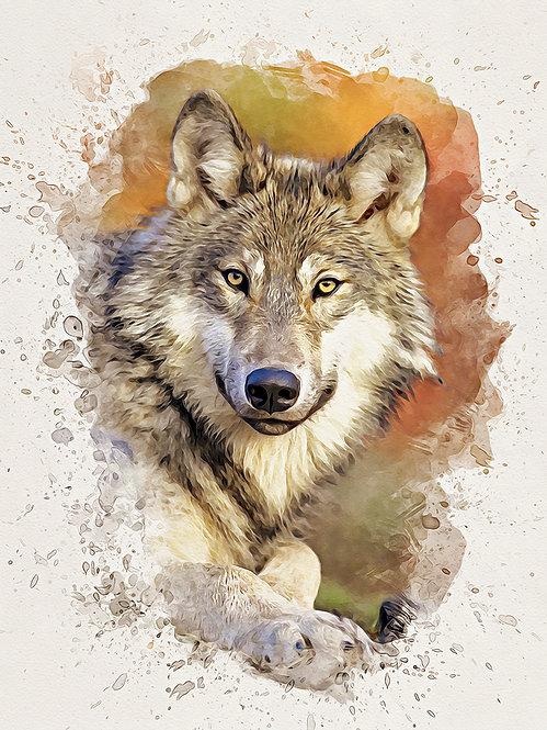"""Gray Wolf""  Fine Art Print"