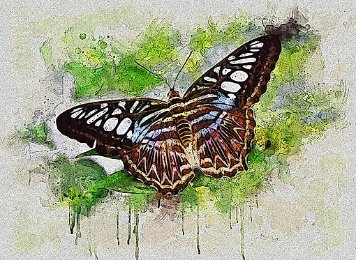 """""""Outstretched Wings"""" Fine Art Print"""