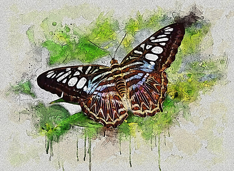 """""""Outstretched Wings"""" Fine Art Print - 12"""" x 16"""""""""""