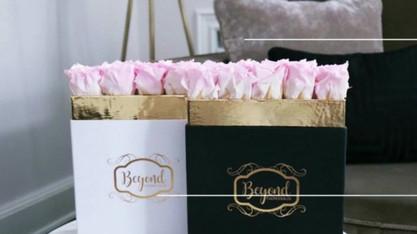 Beyond Flowerbox.mp4