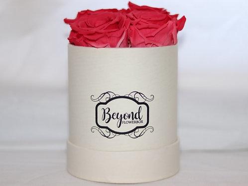 Champagne Mademoiselle Box