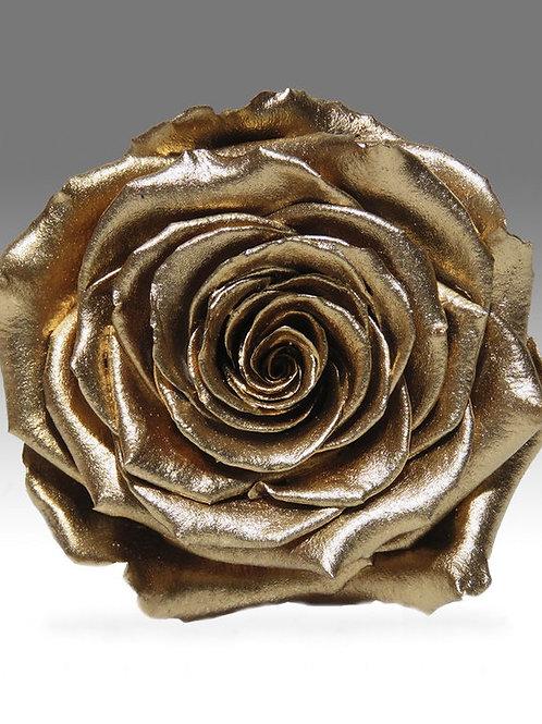 DIY Infinity Rosen in purem Gold