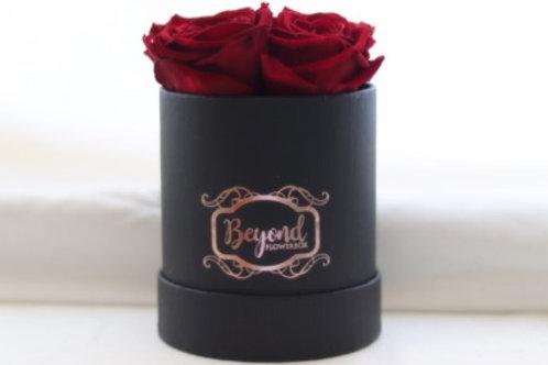 Black Gentleman Box