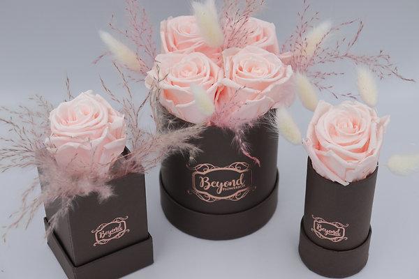 Sweet Chocolate Box, ab 39,- EUR