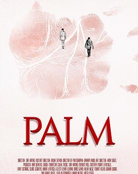 PALM-2-low.jpg
