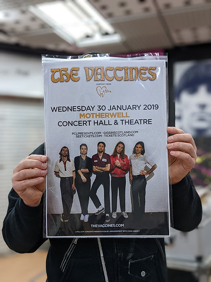 A3 Poster - The Vaccines