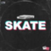 Skate cover ART.jpg