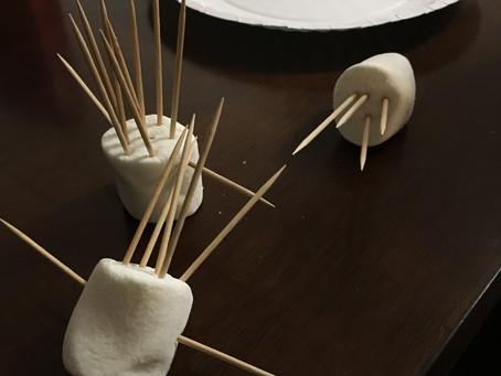 Marshmallows and toothpicks?