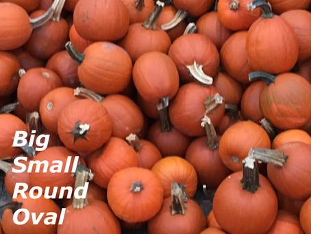 Pumpkin Math Vocabulary