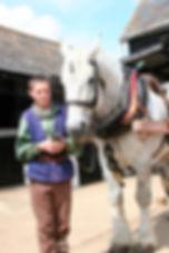 thos cu horse copy.jpg