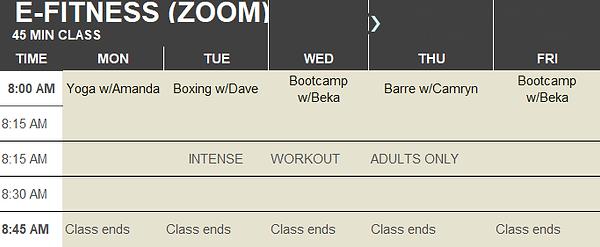 thumbnail_E-Fitness 2020.png