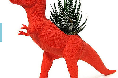 Dino Planter Accents (Set of 5)