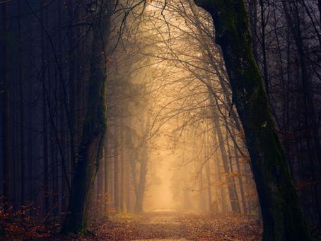 5 Simple Samhain Ritual Ideas