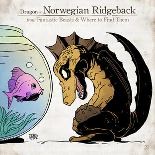 Norwegian Ridgeback
