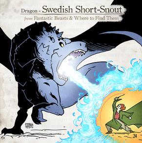 Swedish Short-Snout