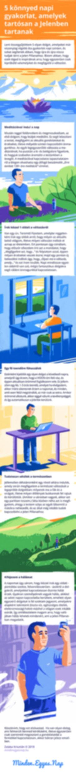 Zalaba, Minden egyes nap, infografika, infographics, illusztráció, Szőke-Kiss Márton, szabadúszó, illusztrátor, grafikus, budapest, békéscsaba