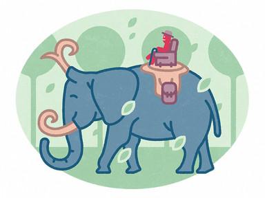 Mr Olaf megül egy elefántot