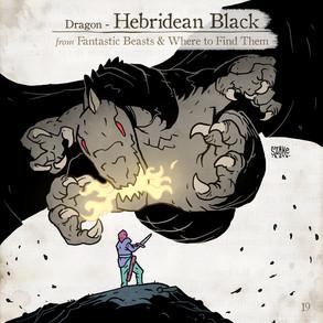 Hebridean Black