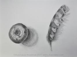 "ShawnaLee W Kwashnak  ""Apple & Feather"""