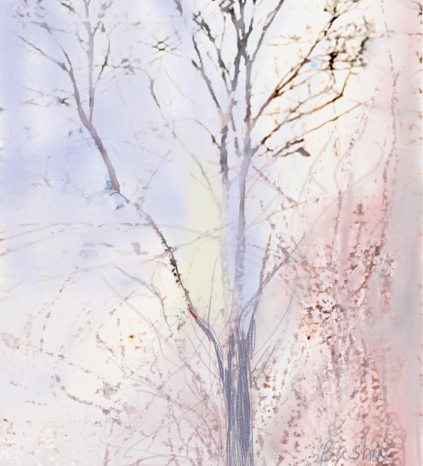 Second Place:  Basha Maryanska  - Outdoor Tree