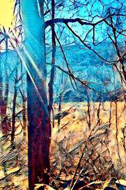 "Karen Sepp    ""Spring Hike 2 Great Hollow"""