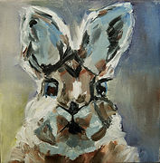 1MCA1 Annie Decker McAward-Cottontail-Oi