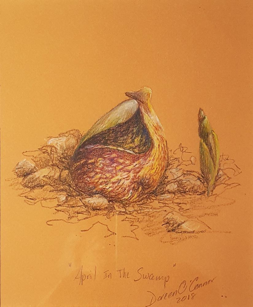 Doreen OConnor - Skunk Cabbage