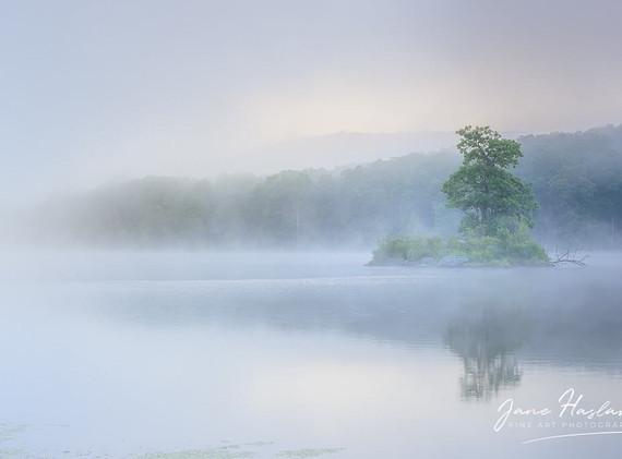 Jane Haslam:  Island of Calm