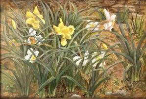 "Doreen OConnor    ""Daffodils"""