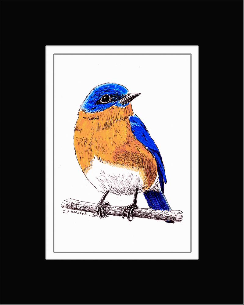 Paul Kmiotek - Bluebird