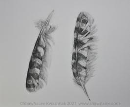 """ShawnaLee W Kwashnak  """"Two Feathers"""""""