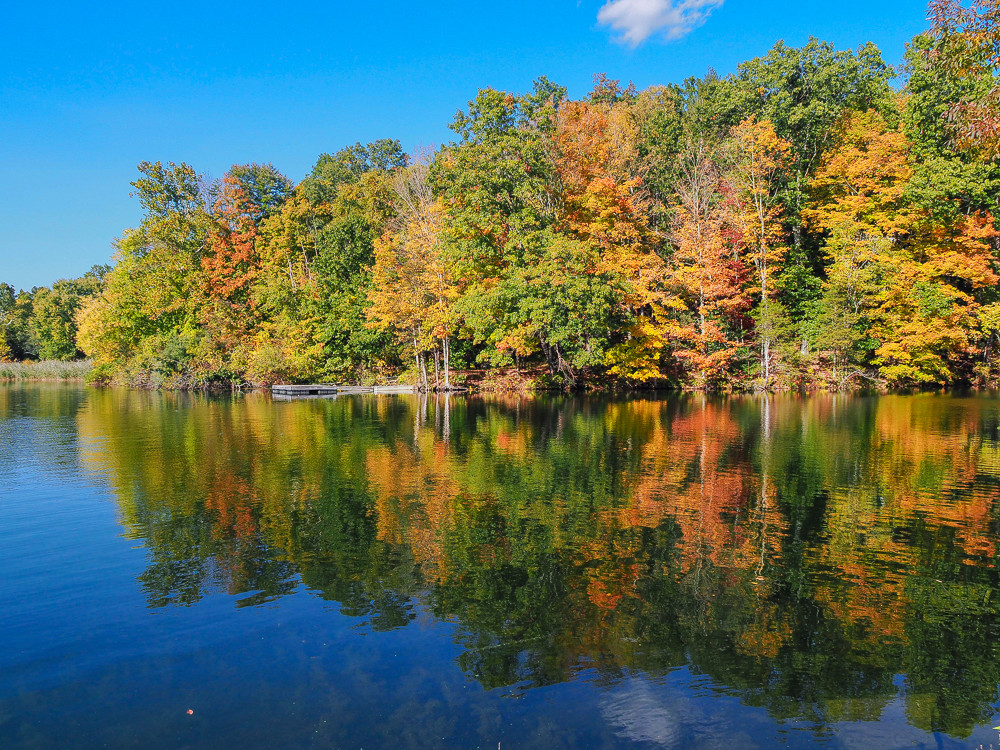 Housatonic River Fall