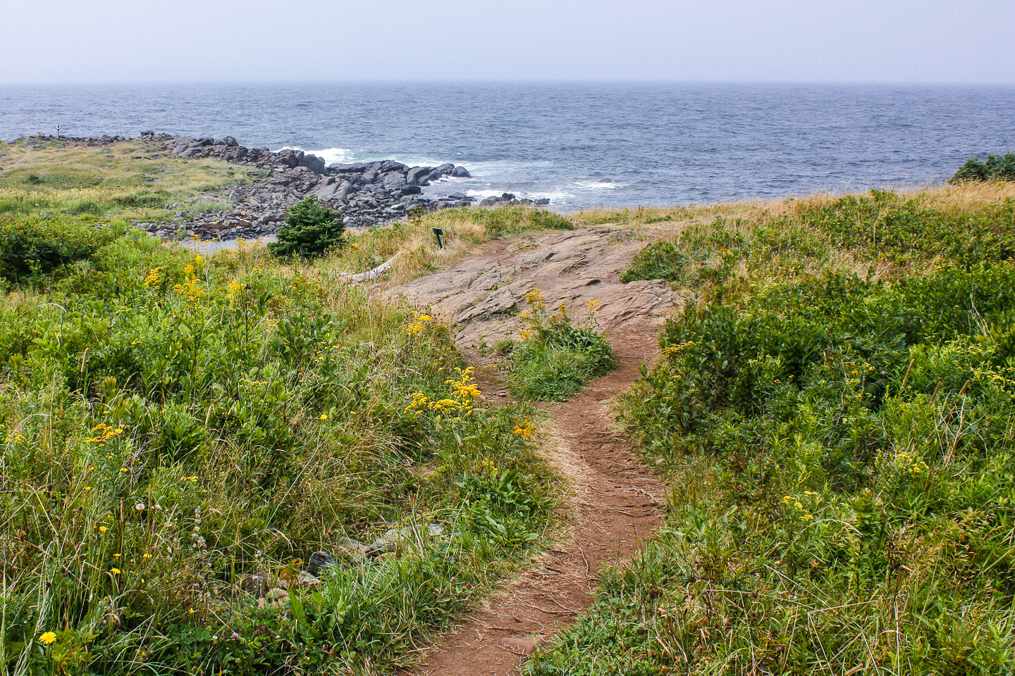 Path to Coast