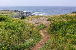Path to Coast