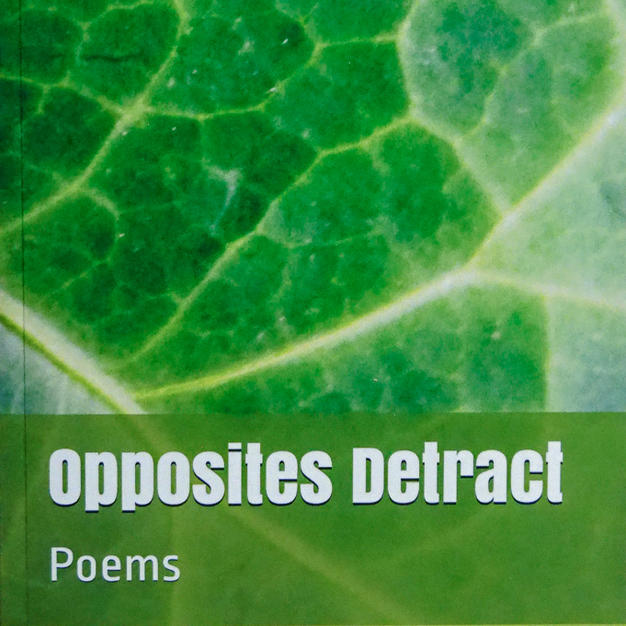 Opposites Detract - Illustrated Poetry Book, $10