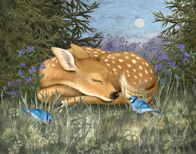 "Denise Cassano   ""Sleeping Fawn"""