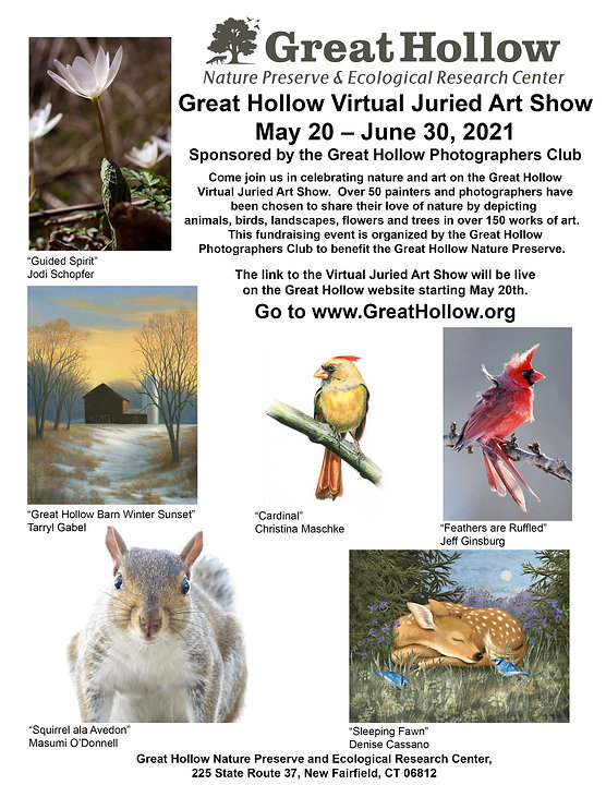GHNP Photo Show Poster 2021.jpg