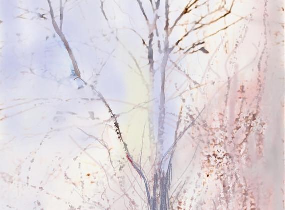 Basha Maryanska:  Outdoor Tree