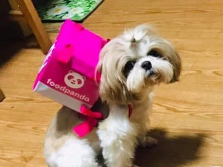 LOOK: It's DoggoPanda's First Delivery!