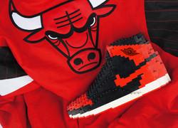 Bulls_side_top_view(sticker)