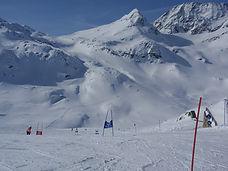 slalompinnar.JPG