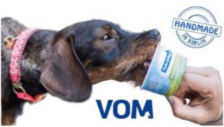 Glass till din hund